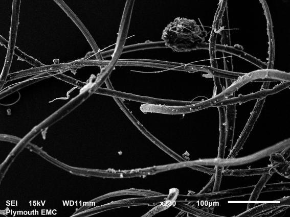 acrylicfibreselectronmicroscopesourceUniversityofPlymouthwashingcloth